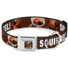 Dug Squirrel! Seatbelt Buckle Dog Collar by Buckle-Down