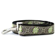 Pinwheel Dutch Spring Dog Leash by Diva Dog