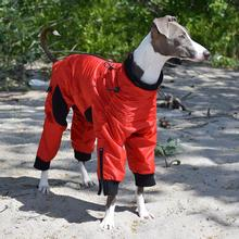 Zippy Dynamics Classy Full-Body Dog Suit