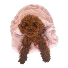 3-in-1 Cozy Dog Cuddle Sack - Light Pink Bella