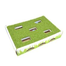Grass Patch Hunting Box Cat Toy