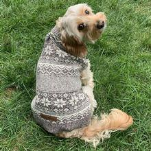 Eddie Bauer Legend Snowflake Dog Sweater - Tortoise Heather