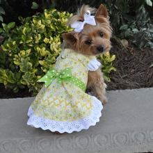 Emily Yellow Floral and Lace Dog Dress with Matching Leash by Doggie Design