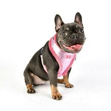 Evon Basic Style Dog Harness by Puppia - Pink