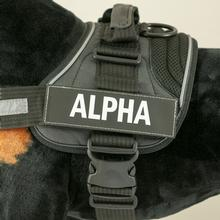 EzyDog Custom Side Patches for Convert Harness - Alpha