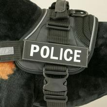 EzyDog Side Patches for Convert Harness - Police