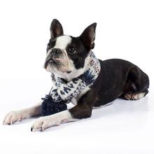 Fall Medley Alpaca Dog Scarf by Alqo Wasi - Blue