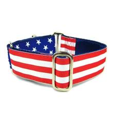 Flag Satin Lined Buckle Martingale Dog Collar