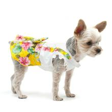 Floral Suspender Dog Dress by Dogo