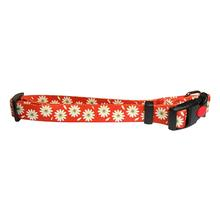 Flower Dog Collar by Cha-Cha Couture - Orange