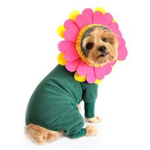 Flower Dog Costume with Flower Headpiece by Doggie Design