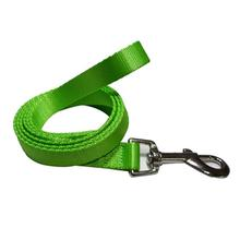 Foxy Solid 5' Dog Leash by Cha-Cha Couture - Green