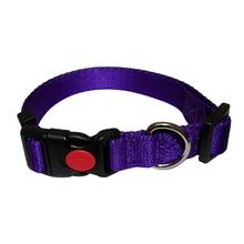 Foxy Solid Dog Collar by Cha-Cha Couture - Purple