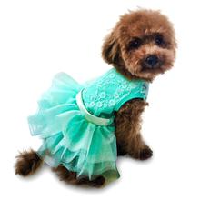 Fufu Tutu Iridescent Lace Dog Dress - Seafoam