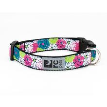 Full Bloom Adjustable Dog Collar by RC Pets