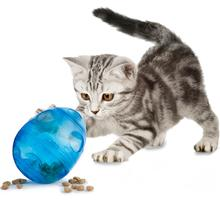 Egg-Cersizer Cat Toy