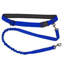 FurHaven Trail Pup Hands-Free Dog Leash - Vibrant Blue