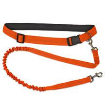 FurHaven Trail Pup Hands-Free Dog Leash - Safety Orange