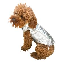 Gallactica Quilted Dog Coat - Silver