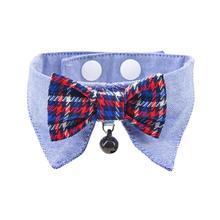 Gareth Cat Shirt Collar and Bow Tie By Catspia - Blue