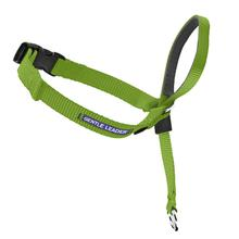 Gentle Leader Headcollar - Apple Green