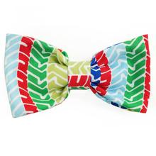 Rainbow Tread Dog Bow Tie from Daisy and Lucy