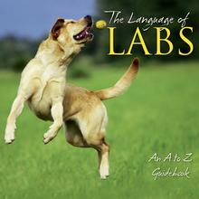 The Language of Labs Book for Humans