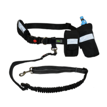 GF Pet Waist Belt Plus Bungee Leash