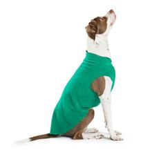 Gold Paw Fleece Dog Jacket - Emerald Green