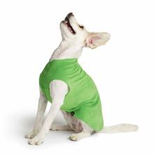 Gold Paw Fleece Dog Jacket - Grass Green