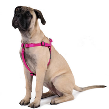 Gold Paw Step-In SwiftLock Dog Harness - Fuschia