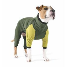 Gold Paw Stretch Fleece Dog Onesie - Hunter and Avocado