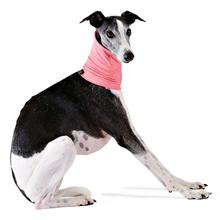 Gold Paw Sun Shield Dog Snood - Coral Pink