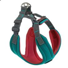 Gooby Convertible Dog Harness - Turquoise