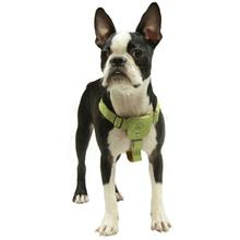 Gooby Luxury Step-In Dog Harness - Green