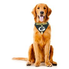 Green Bay Packers Tie On Dog Bandana