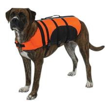 Guardian Gear Aquatic Pet Life Vest Preserver - Orange