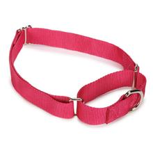 Guardian Gear Nylon Martingale Dog Collar - Raspberry