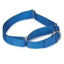 Guardian Gear Nylon Martingale Dog Collar - Blue