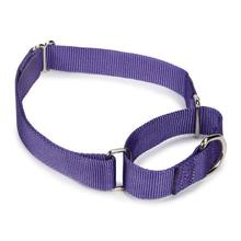 Guardian Gear Nylon Martingale Dog Collar - Ultra Violet
