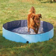 Guardian Gear Cool Pup Splash about Dog Pool - Sky Blue