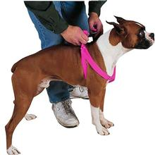 Guardian Gear Two-Step Dog Harness - Flamingo Pink