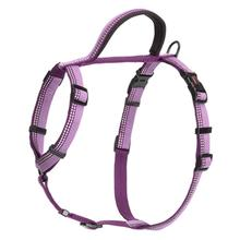 Halti Walking Dog Harness - Purple