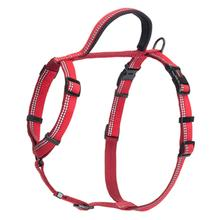 Halti Walking Dog Harness - Red