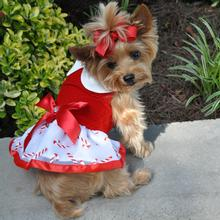 Holiday Dog Harness Dress by Doggie Design - Candy Canes
