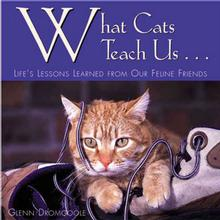 What Cats Teach Us Book for Humans; Life's Lessons Learned form Our Feline Friends