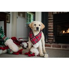 HuggleHounds Holiday Totally Tartan Dog Scarf