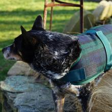 HuggleHounds HuggleWear Wool Dog Jacket - Blackwatch Plaid