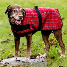 HuggleHounds HuggleWear Wool Dog Jacket - Red and Gray Plaid