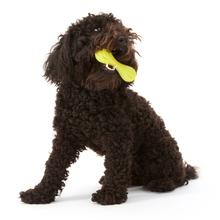 West Paw Hurley Dog Toy - Green